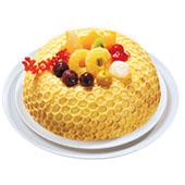 蜂巢(6-10吋)